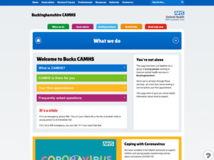 Bucks CAMHS What We Do Page