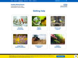 Healthy Mind Bucks Getting Help Page