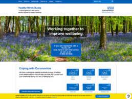 Healthy Mind Bucks Home Page